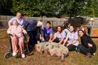 Animal therapy at care home